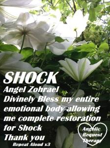 shock 2